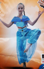 Aladdin Princess Costume