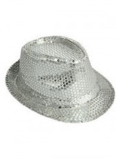 Sequenced Fedora Silver